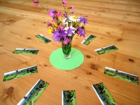 Blumenstrauß aus dem Nationalpark Kalkalpen