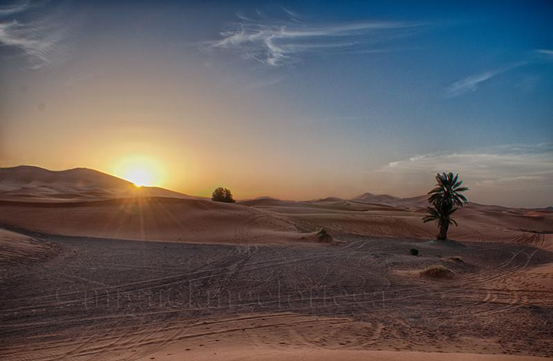 Marruecos, sur de Marruecos, fotografía de viajes, turismo, erg, desierto, amanecer, amanecer en el desierto, palmera, arena