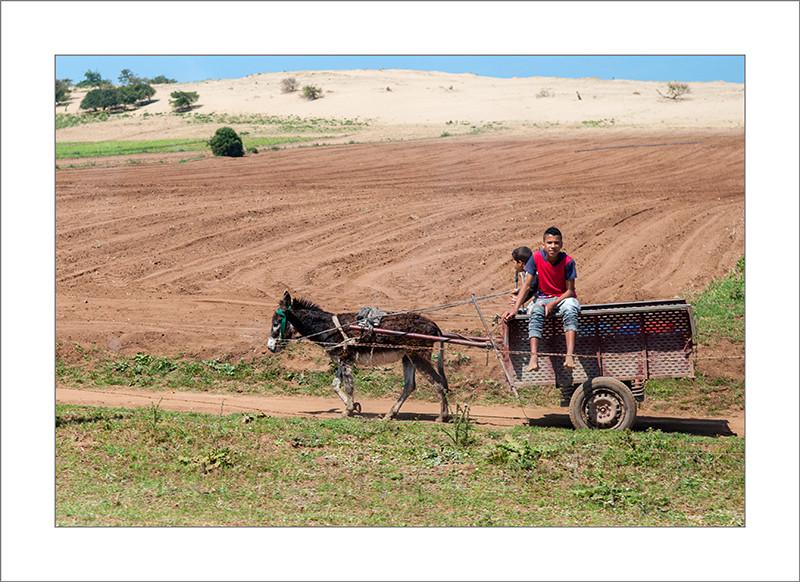 Marruecos, tradicional, carromato, asno, chicos, fotografía de viajes, fotografía callejera, turismo, street photograph