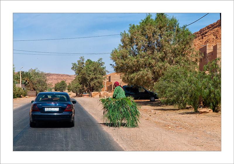 Marruecos, Fez, contrastes, Mercedes, coche, burro, transporte moderno, transporte tradicional, carretera, fotografía de viajes, turismo