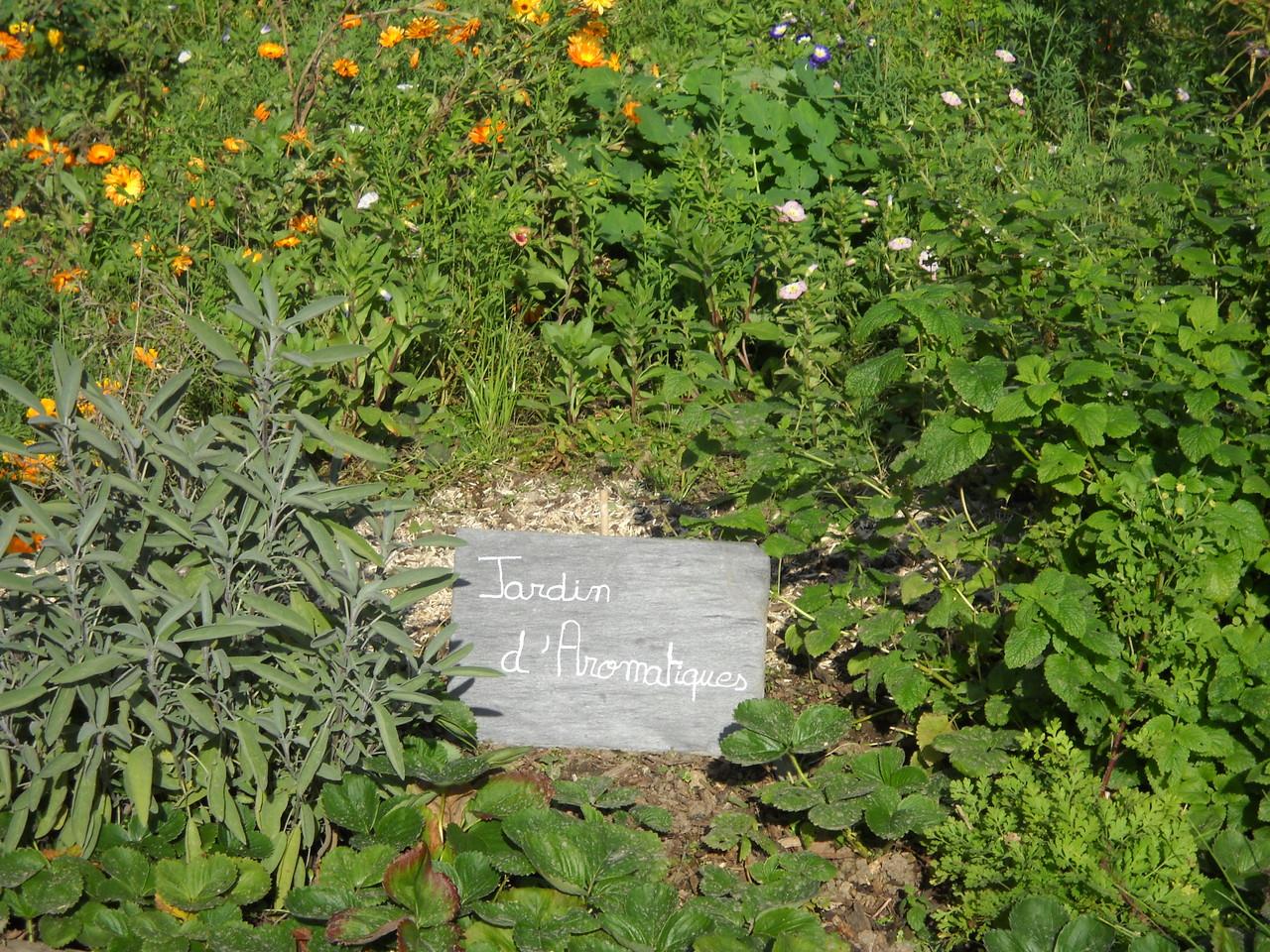 jardin aromatique gite ecologique Thierache
