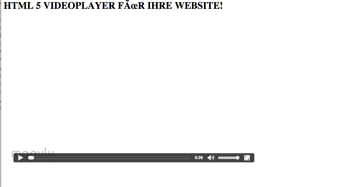 DER PLAYER IN GOOGLE CHROME