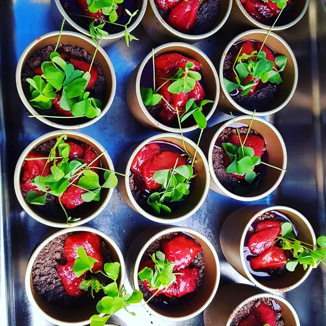 Blumentopf Dessert Vanillecreme mit Schokoladenerde und Erdbeeren ALE-X-BBQ