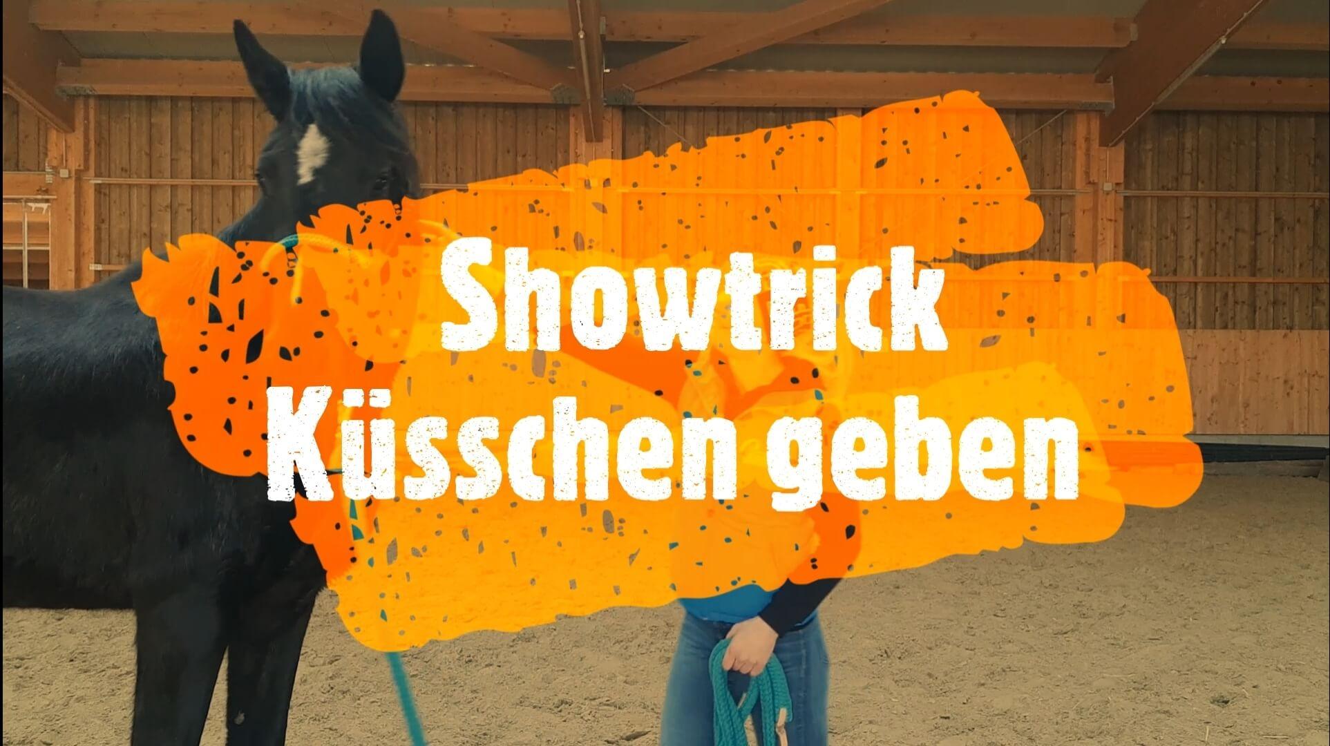 Pferdeshowtrick: Küsschen geben