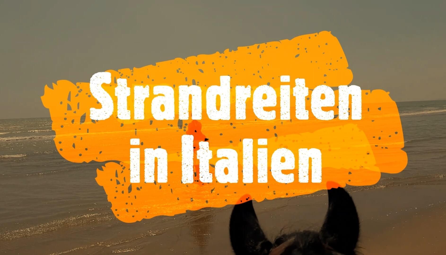 Urlaub mit Pferd: Strandreiten in Italien