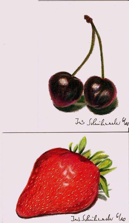 Kirsche und Erdbeere