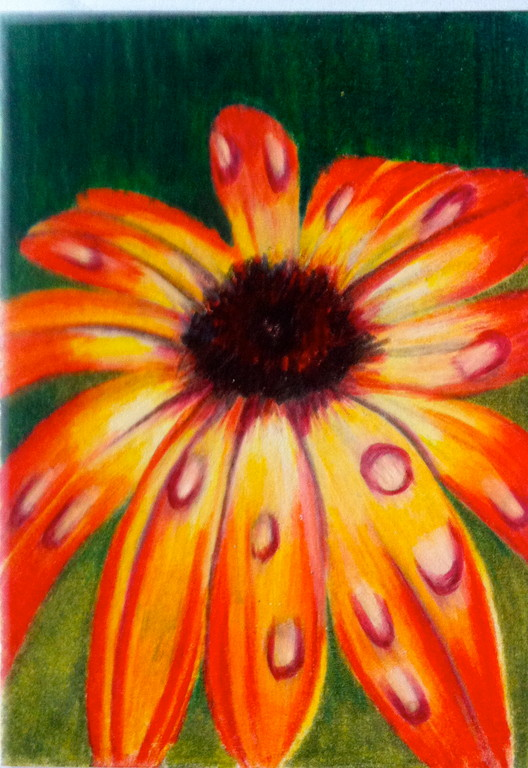 Menominee flower 2