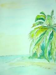 Erinnerungen an unseren Urlaub in Florida 2008 Aquarell