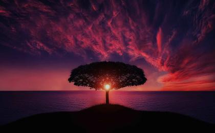 Wahrheit und die große Illusion Bewusstsein