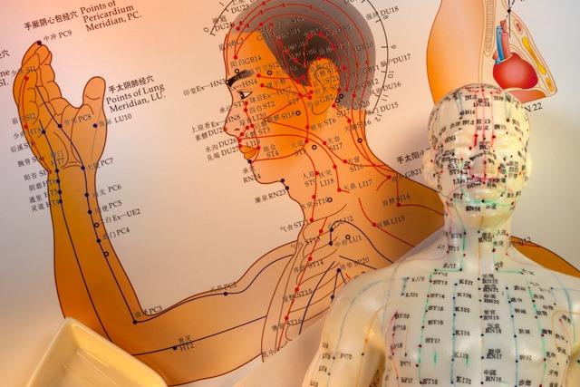 De meridianen en acupunctuurpunten
