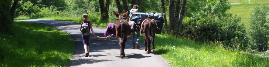 Grandes randonnées en Ardennes