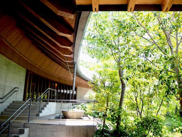 高級ホテルの庭園みたい、、、!!