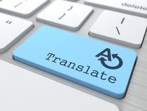 Website Translation service
