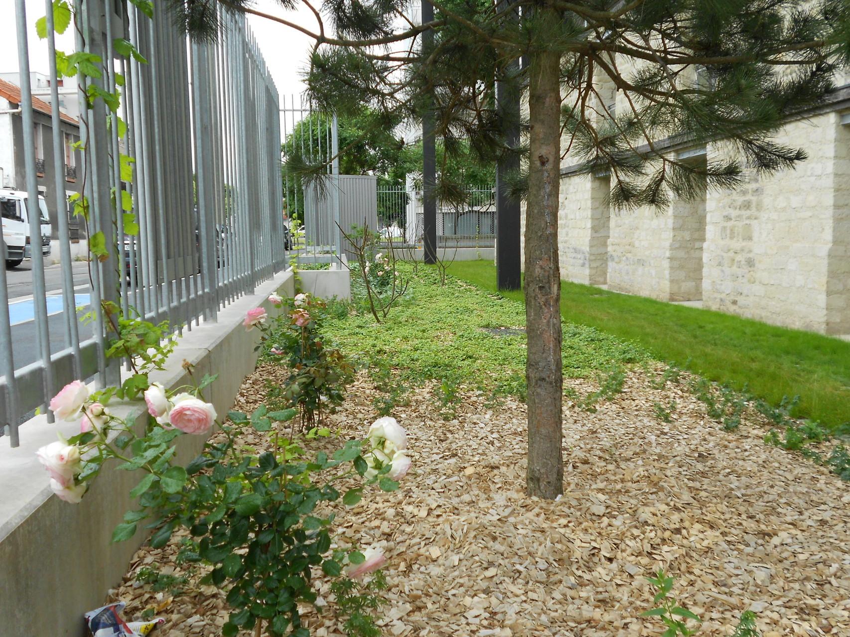 la Briqueterie / côté rue : le jardin en pied de façade/  © in-folio paysagistes