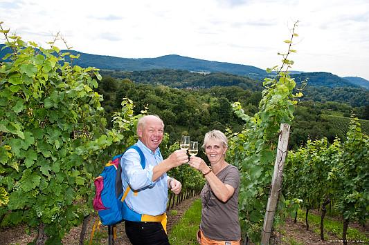 Wein trinken im Weinberg