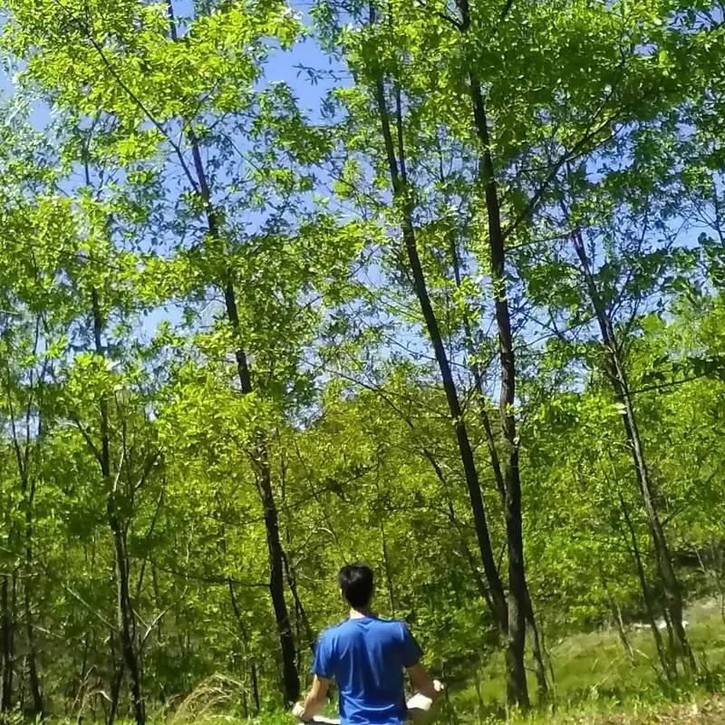 森を活かし森に生かされる「環」の森で暮らすということ