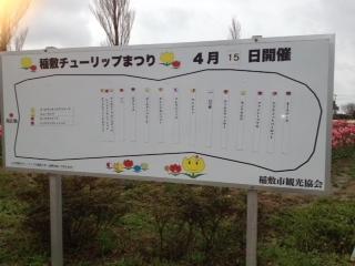 稲敷チューリップまつり看板 坂本広告社
