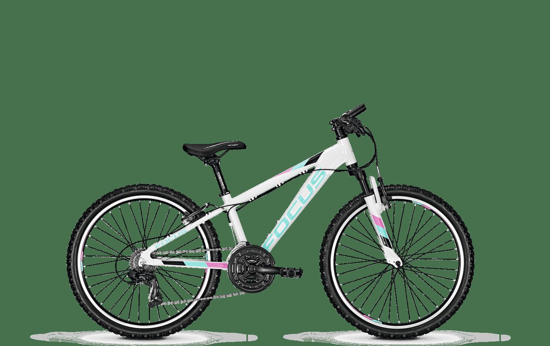 Fahrrad Focus Raven 26 zoll in 5110 Oberndorf bei Salzburg