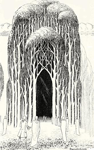 巨樹の生い繁る杜(もり)でできた神殿