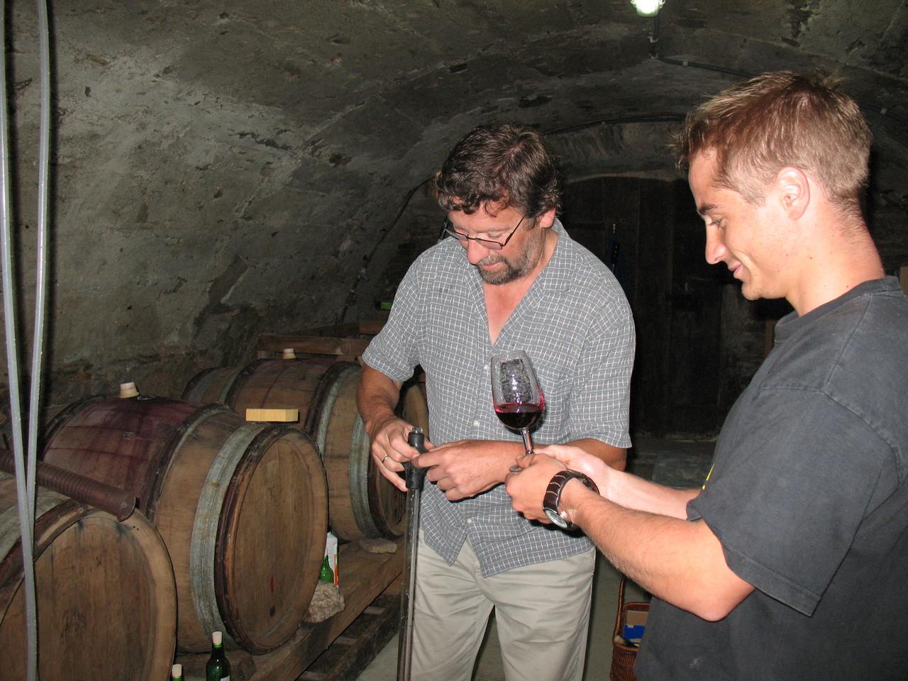 suivi des vins en cave