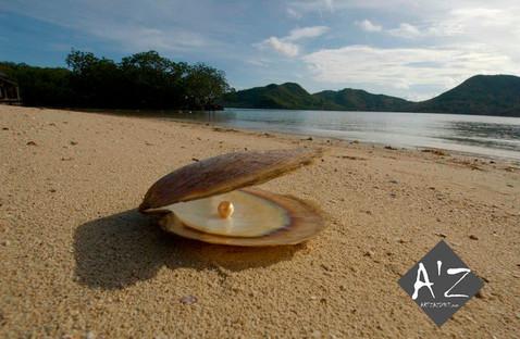 Perle des Philippines Créations Art'Zazimut Laurence Loustaneau