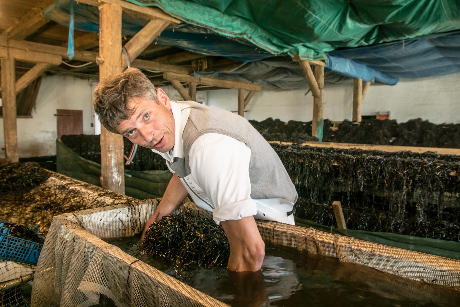 zu Besuch beim Seegrasmann Kristian Dittmann