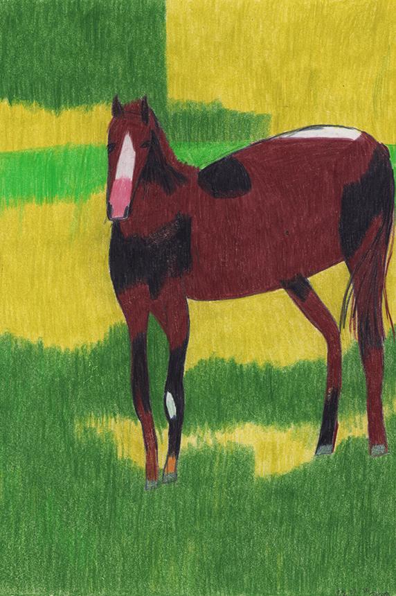 Pferd | Farbstift auf Papier | 40 x 28cm | 2020