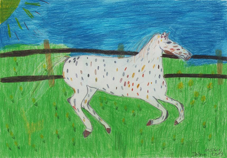 Pferd | Farbstift auf Papier | 21 x 29cm | 2019