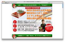 旧広島市民球場フィギュアのホームページ