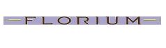 Fahrzeugspezifische Anhängerkupplung für Ihr Florium Wohnmobil, Reisemobil.