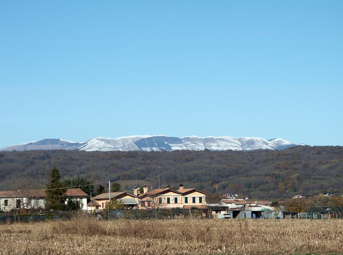 The Montello