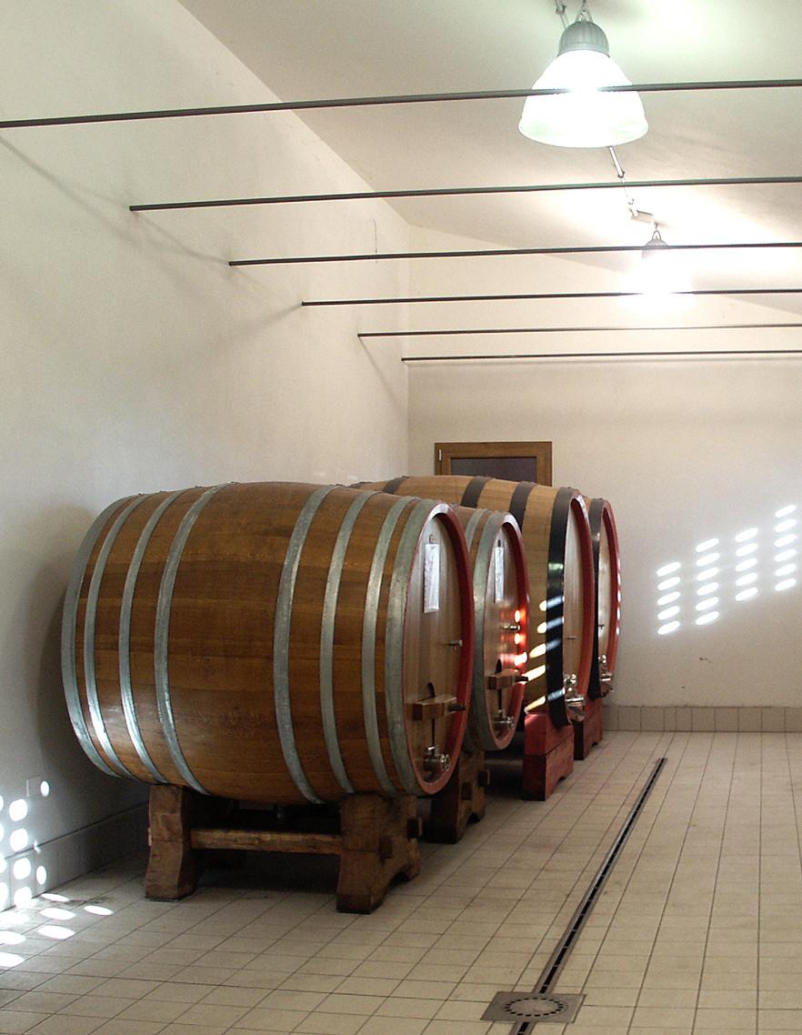 Le botti per affinare i vini