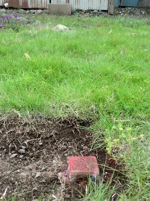 桐生市川内町2丁目 売り土地 土地の境界 国土調査の結果の杭 芝生の下