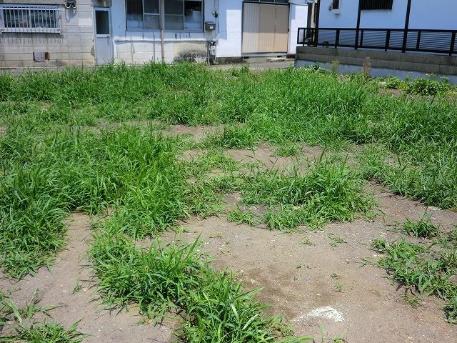桐生駅前パーキング隣の土地の除草②
