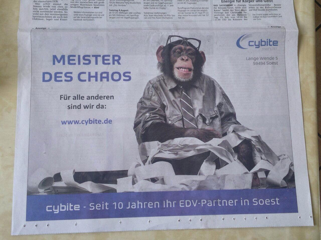 Cybite: Anzeige zum 10-jährigen Jubiläum Grafik: Svenja Krüger