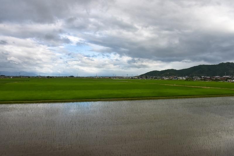 米原近くになると見られるこの手の風景。じっくり撮影したいところでしたが、