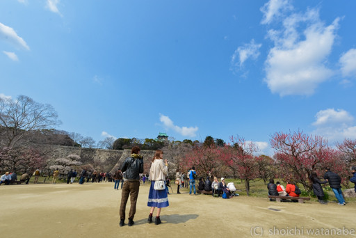 大阪城公園 ご覧の通りの晴天に恵まれました。