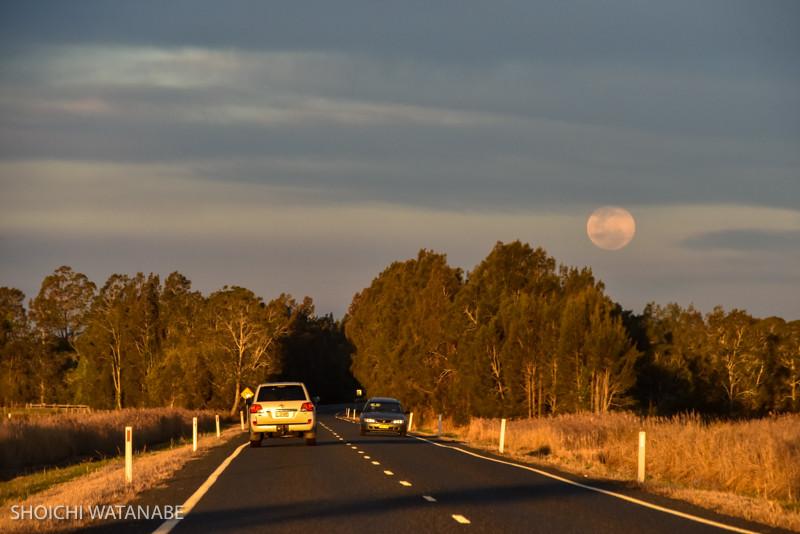 あとで知ったのですが、この日はエクストラスーパームーンということで大きな月が出ていました