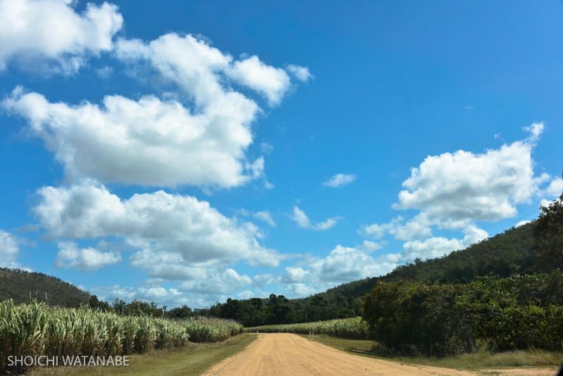 舗装された道でなくなるとちょっと不安を覚えます・・・。でもそれにしても良い空です。