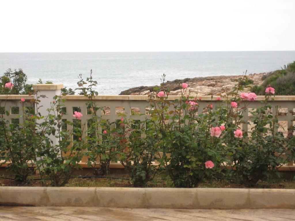 "Zona de la piscina, junto a la cala "" Puerto Azul"",  www.adapeniscola-apartamentos.com"