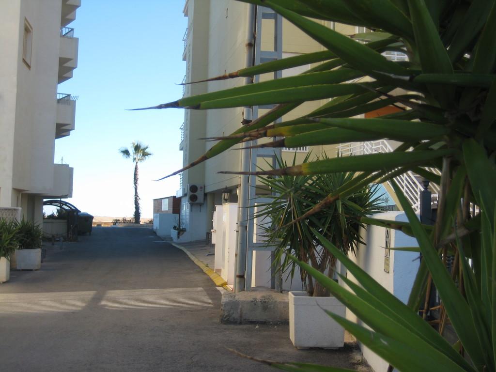 Playa a 50 m. www.adapeniscola-apartamentos.com