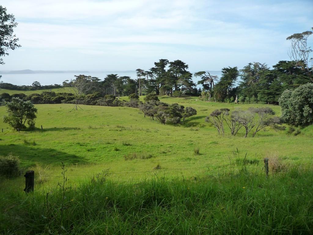 Ausblick vom Gruendstueck