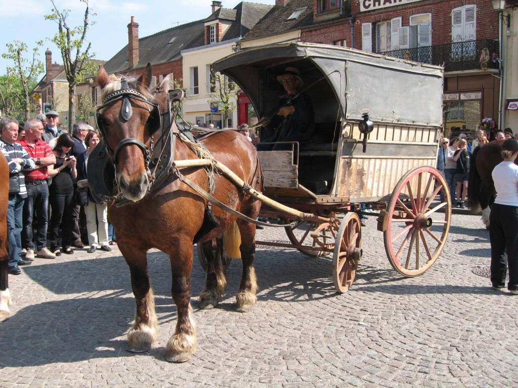 Beau Marché 2011 a TOUCY