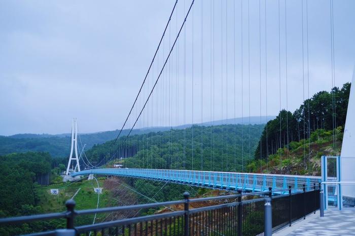 絶景の富士山を望もう! 三島の吊り橋、三島スカイウォークを歩く