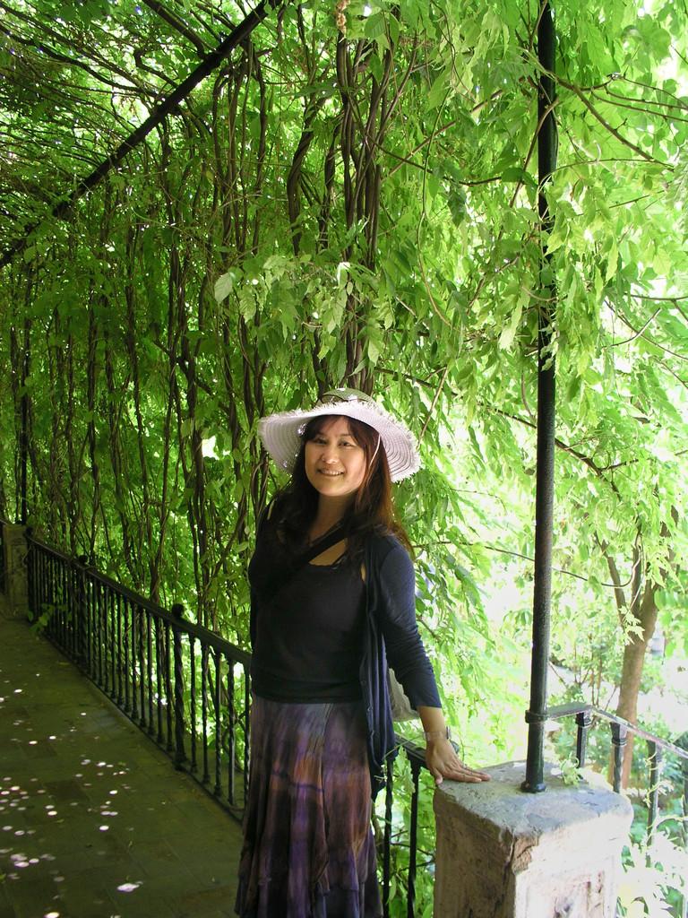 アルカサル内の美しい緑のカーテンで。