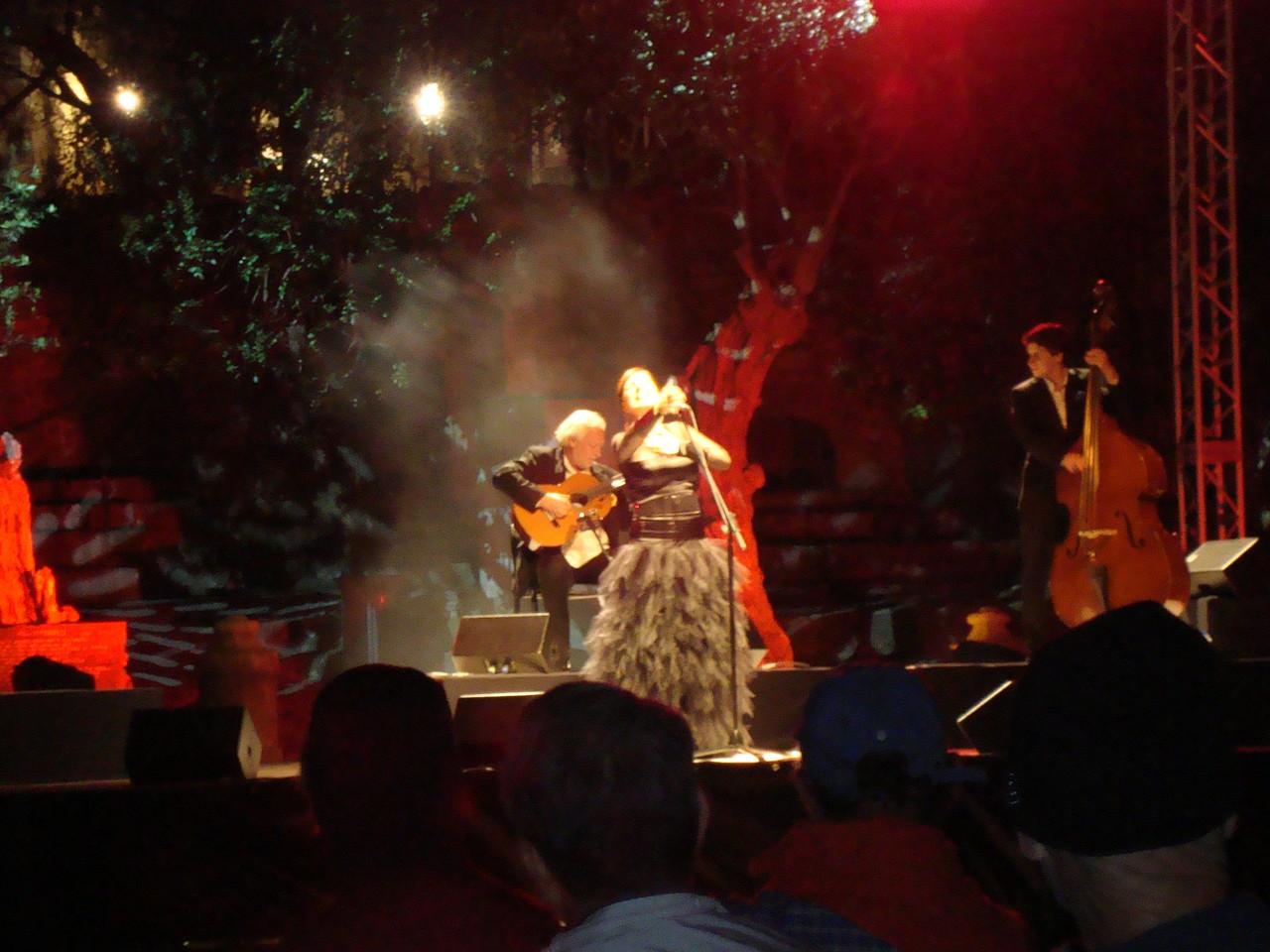 カティアゲレイロのコンサートでした。贅沢な時間。