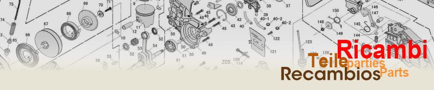 accessori +ricambi +decespugliatore +soffiatore +motosega +mototrivella +potatore