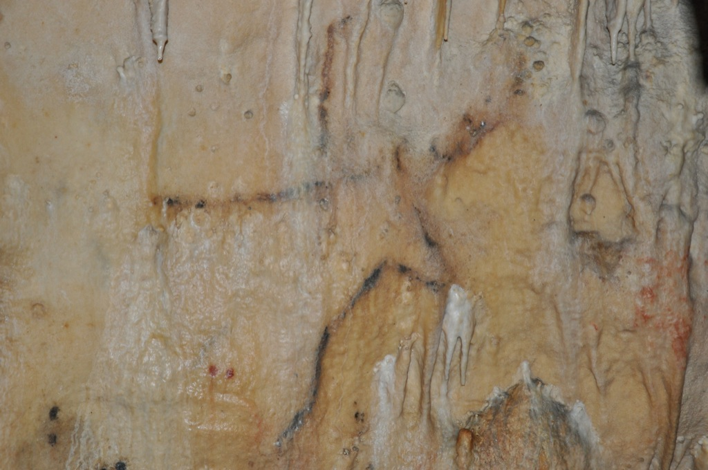 Cervidé - Grottes de Cougnac - Pays de Gourdon