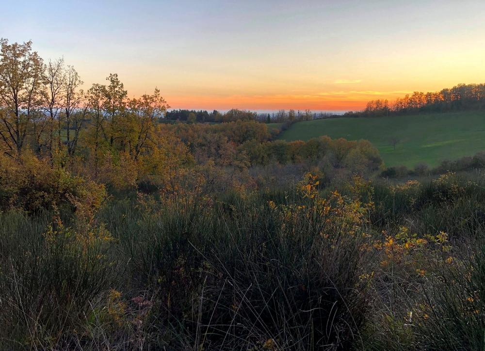Coucher de soleil dans la campagne de Lisle-sur-Tarn par Céline Chouvel