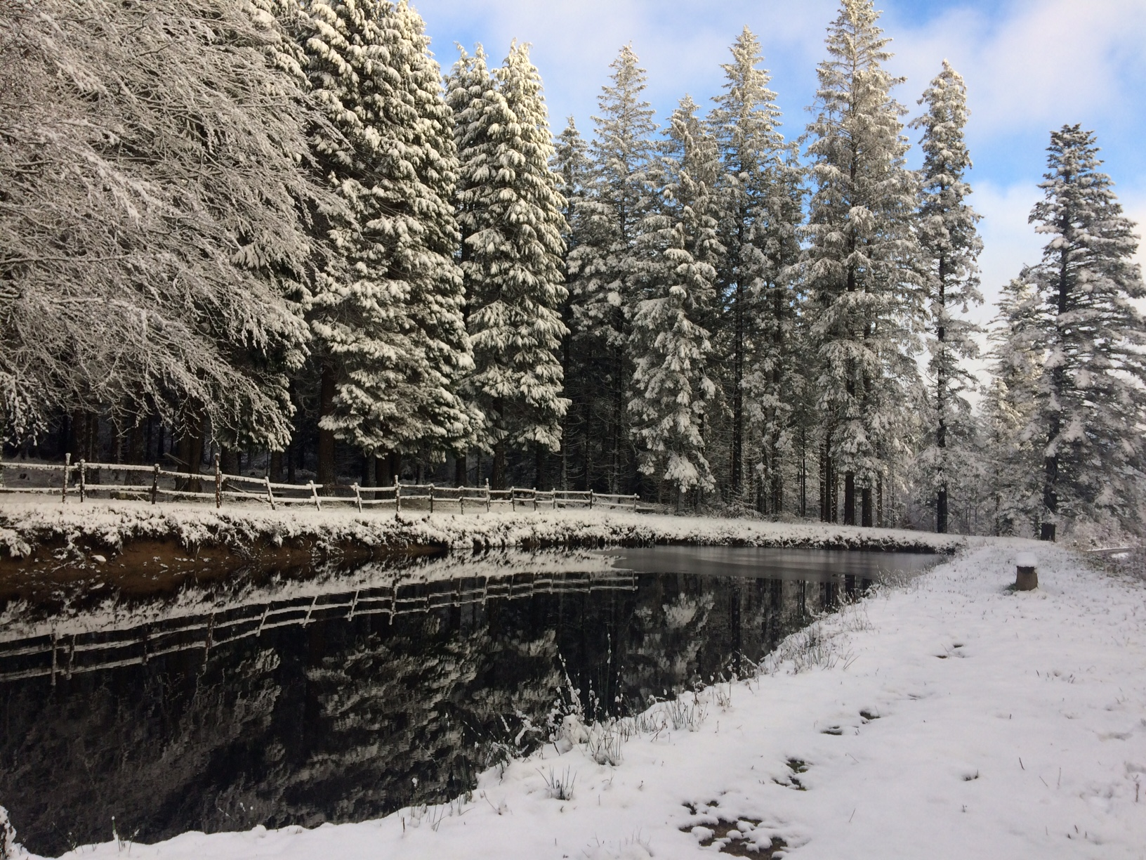 Premières neiges sur les Monts de Lacaune par Claude Moine